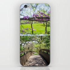 Bridges and Branches iPhone & iPod Skin