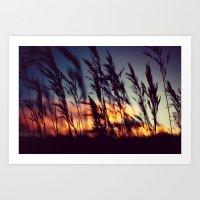 Prairie Skies Art Print