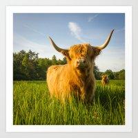 Summer Highland Art Print