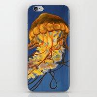 Pacific Sea Nettle #2 iPhone & iPod Skin