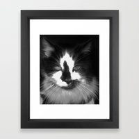 Blott - Kitty Cat II Framed Art Print