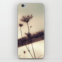 One More Day iPhone & iPod Skin
