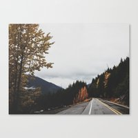 Mt. Rainer National Park Canvas Print