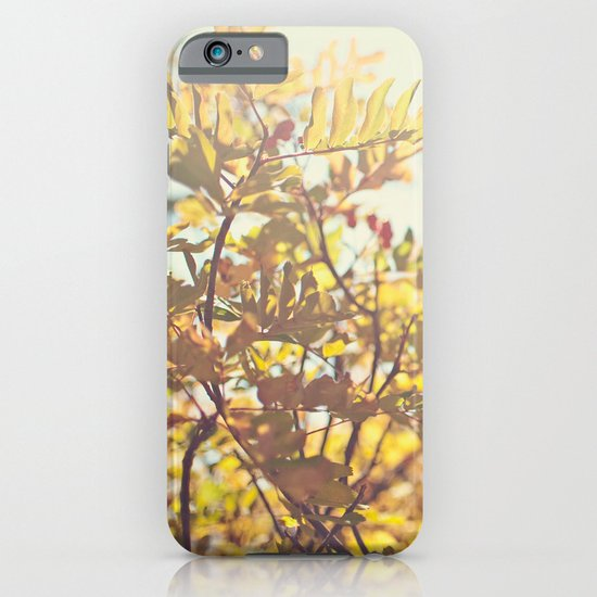 Fading Fall Leaves iPhone & iPod Case