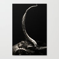 The Kraken's Whip Canvas Print