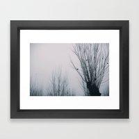Foggy Morning Framed Art Print