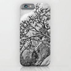 Enchanted Rock iPhone 6 Slim Case