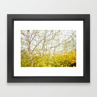 Bright Framed Art Print
