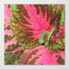 Pink & Lime Leaves Canvas Print