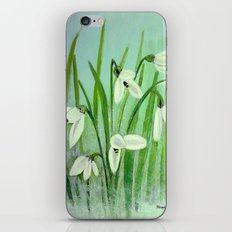 Snow drops  iPhone & iPod Skin
