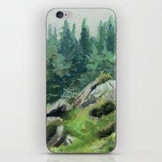 Irish Wilderness iPhone & iPod Skin