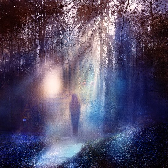 Path lights Art Print