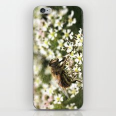The Drone Fly iPhone & iPod Skin
