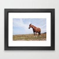 Horse iii Framed Art Print