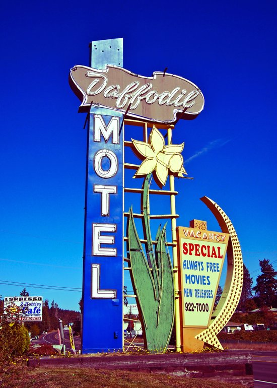 Daffodil Motel sign Canvas Print