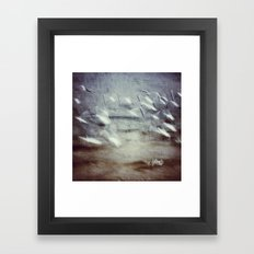 Seagulls Framed Art Print