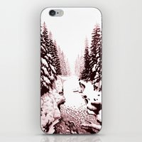 winter creek iPhone & iPod Skin