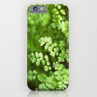 Maidenhair iPhone 6 Slim Case