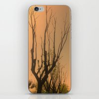 Spiritual trees iPhone & iPod Skin