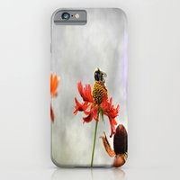 iPhone & iPod Case featuring Gentle dream by  Alexia Miles photography