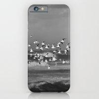Seagulls flying over the mediterranean sea in Tel Aviv,Israel iPhone 6 Slim Case