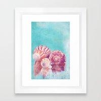 Seashell Group Framed Art Print