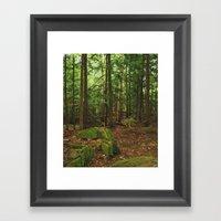 Pathfinder III Framed Art Print