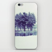 Mirror Lake iPhone & iPod Skin