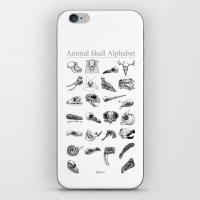 Animal Skull Alphabet iPhone & iPod Skin