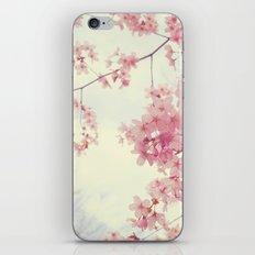 Dreams In Pink iPhone & iPod Skin