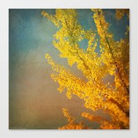 Yellow Ginkgo Tree in Autumn Canvas Print