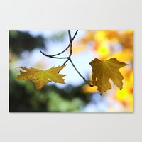 Held Together Canvas Print