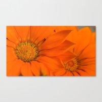 Double Orange. Canvas Print
