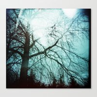 Winter Tree Holga Canvas Print