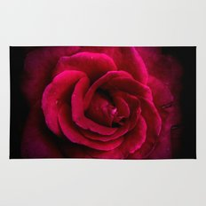 Texture Of A Rose Rug