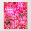 Bright And Cheery Geranium Abstract Canvas Print