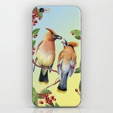 Cedar Waxwing Love iPhone & iPod Skin