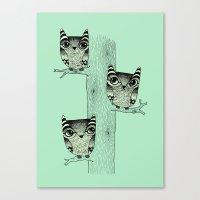 Owls (green) Canvas Print