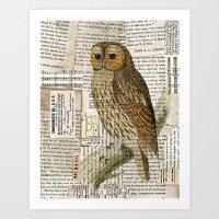 Woodland Owl On Branch I… Art Print