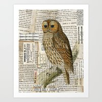 Woodland Owl On Branch I… Art Print