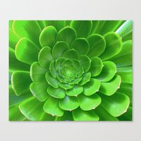 Green Within Canvas Print