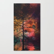 nyce vyww Canvas Print