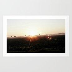 delta dawn Art Print