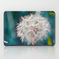 #115 iPad Case