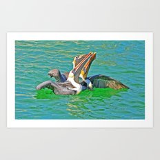 Pelican Trio Art Print