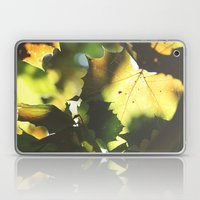 Fall Is In the Air II Laptop & iPad Skin