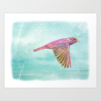 Rainbow Soar Art Print