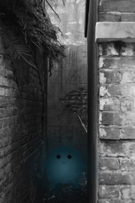 Silence in the Alley Art Print