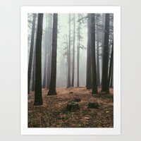 Forest IV Art Print