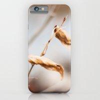 The Still Of Winter iPhone 6 Slim Case